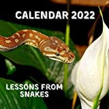 Lessons From Snakes Calendar 2022: September 2021 - December 2022 Monthly Planner Mini Calendar With Inspirational Quotes