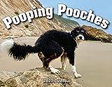 2022 Pooping Pooches White Elephant Gag Gift Calendar (Calendar)