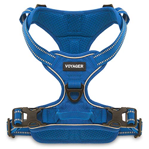 Voyager by Best Pet Supplies, Dual-Attachment No-Pull Adjustable Harness with 3M Reflective Technology, (Royal Blue Lattice, Small)