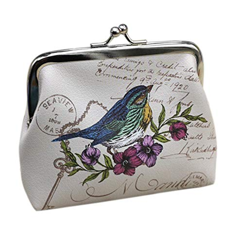 TLZR Mini Cartera Vintage para Mujer, Tarjetero, Monedero, Bolso de Mano Style 1