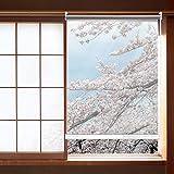 HYDT Store en bambou Türfenster Klarer Rollo mit Armaturen, 100% wasserdichte, Regendichte Rollläden für Pavillon Balkon - 80/90/100/120/140 cm Breit (Size : 140×260cm(55.1 in×102.4 in))