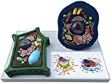 Model Animal and Plant Cells Model - Medical Anatomical Teaching Model - Biological Experimental Teaching Comparative Models - for Study Display Teaching Medical Model