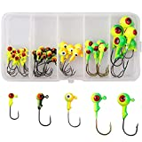 Fishing Jig Head Hook Set, 35/60pcs Round Painted Ball Head Jig Hook with Barb Double Eye for Soft Bait Lures Freshwater Saltwater Fishing 3/8 1/4 1/8 1/16 1/32oz