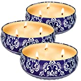 Citronella Candles Outdoor and Indoor 3 x 13.5 Oz,3 Wick Scented Candles Gift Set,Aromatherapy Candles Natural Soy Wax Candle in Portable Travel Tin 3 Pack
