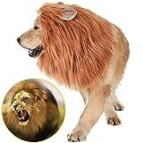 Jemma - Peluca de melena de león para perro, realista y divertido, peluca de ajustable para perros medianos a grandes, fiesta de Pascua, Halloween, disfraz, marrón