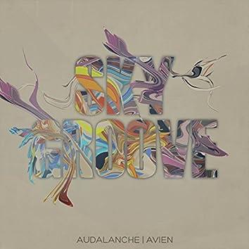 Sky Groove (Feat. Avien)