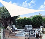 AXT SHADE Toldo Vela de Sombra Triangular 3 x 3 x 4,25 m, protección Rayos UV y HDPE Transpirable...