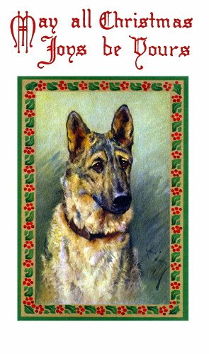 c1900~A.Wardle~Christmas Holly Border~German Shepherd Dog Profile~6 pack NEW Matte Vintage Picture Large Blank Note Cards with Envelopes