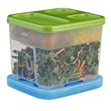 Rubbermaid LunchBlox Salad Kit ,Green