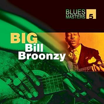 Blues Masters Volume 5 (Big Bill Broonzy)