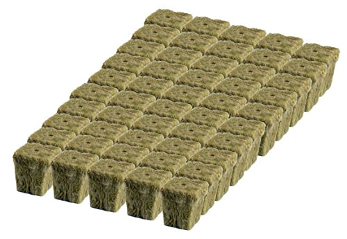 Grodan 1' x 1' Starter Plug Rockwool Hydroponic Grow Media (50 Cubes) (Full Size) (50 Cubes) (Full Size)