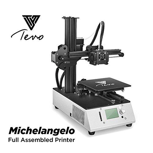 TEVO - Michelangelo