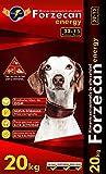 FORZECAN Pienso Energy de Alta Energía para Perros Adultos de Razas Medianas o Grandes - 20kg