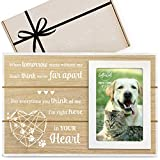 🎀 Our Cat or Dog Memorial Picture Frame is a beautiful cat or dog loss sympathy gift, its perfect for loss of pet gifts, or dog remembrance gift for any friend who has recently lost their beloved pet. a cherished animal is never truly forgotten if th...