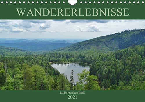 Wandererlebnisse im Bayrischen Wald (Wandkalender 2021 DIN A4 quer)