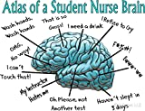 LA STICKERS Nursing Student Humor Brain - Sticker Graphic - Auto, Wall, Laptop, Cell, Truck Sticker for Windows, Cars, Trucks