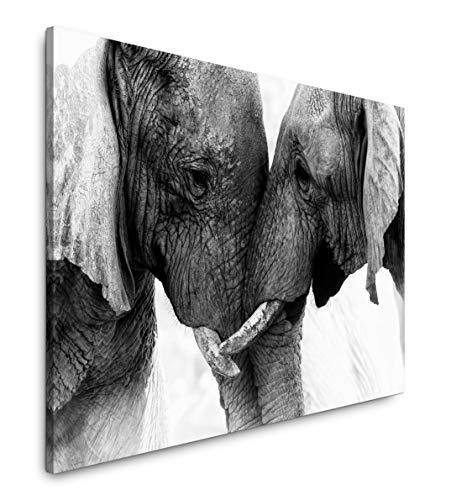 Paul Sinus Art Elefanten 120x 80cm Inspirierende Fotokunst in Museums-Qualität für Ihr Zuhause als Wandbild auf Leinwand in