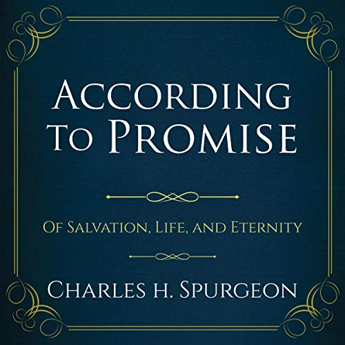 According to the Promise audiobook cover art