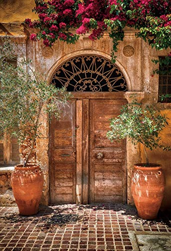 Old Rural House Village Porch Yard Vine Door Spring Baby Photo Background Photography Backdrop Photocall Photo Studio A14 3x3m