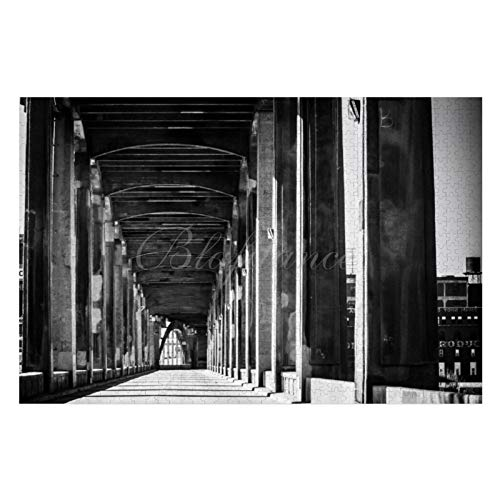 Scott397House Jigsaw Puzzles 1000 Pieces for Adults, Large Piece Puzzle 12Th Street Bridge Kansas City Mo Black & White E67 Fun Game Toys Birthday Gifts Fit Together