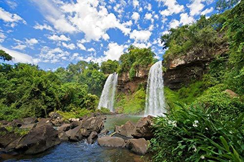 N/A Colorido Y Hermoso Rompecabezas para Adultos De Puzzle 1000 Piezas, Rompecabezas Desafiante Cataratas del Iguazú