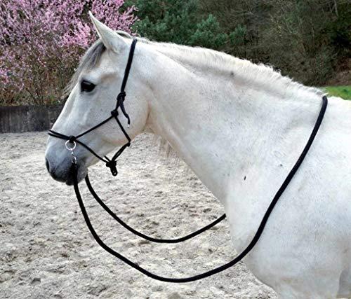 Cabestro para nudos con riendas negro para formación, trabajo en el suelo, longieren o para montar a caballo, sin mordiscos.
