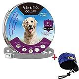 YCGJ Floh- und Zeckenhalsbänder für Hunde Katzen - Schutz für 8 Monate - Verstellbare 23,6-Zoll-Länge für kleine, mittelgroße Haustiere,A