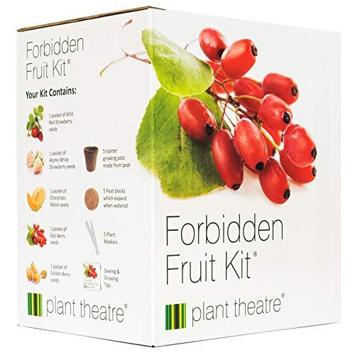 Kit Verbotene Früchte von Plant Theatre - 5 Köstliche Früchte wachsen - Ein tolles Geschenk