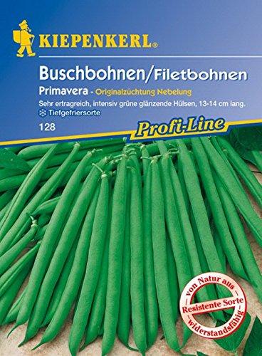 Kiepenkerl, Buschbohnen Primavera