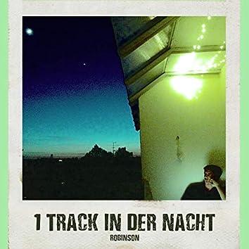 1 Track in der Nacht