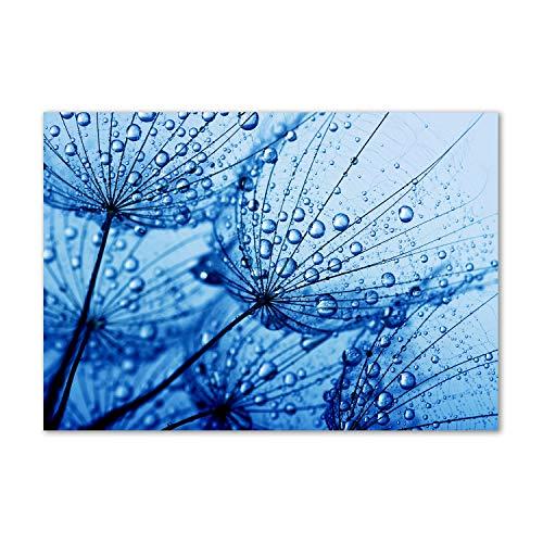 Tulup Acrylglas - Wandkunst - Bild auf Plexiglas Deko Wandbild hinter Kunststoff/Acrylglas Bild - Dekorative Wand für Küche & Wohnzimmer 100 x70 cm - Blumen & Pflanzen - Pusteblume - Blau