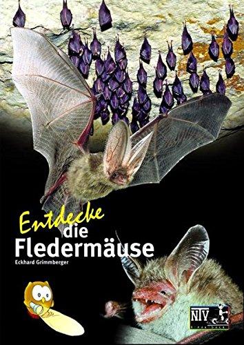 Entdecke die Fledermäuse (Entdecke - Die Reihe mit der Eule / Kindersachbuchreihe)