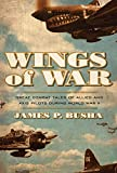 Wings of War: Great Combat Tales of Allied and Axis Pilots During World War II (English Edition)