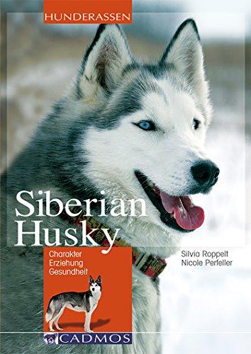 Siberian Husky: Charakter, Erziehung, Gesundheit (Hunderassen)