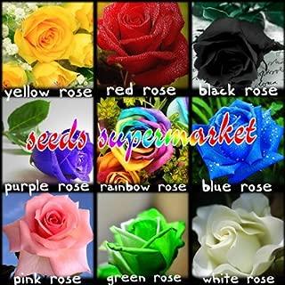 400 pcs Seeds Rare Holland Rainbow Rose,Flower Home Garden rare rainbow rose flower seeds Seeds