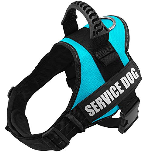 """Fairwin Service Vest Dog Harness - Adjustable Nylon with Removable Reflective Patches for Service Dogs Large Medium Small Sizes (L:Chest 28""""-37"""";Neck 23""""-29"""", Blue)"""