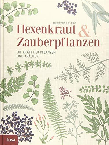 Hexenkraut & Zauberpflanzen: Die Kraft der Pflanzen und Kräuter