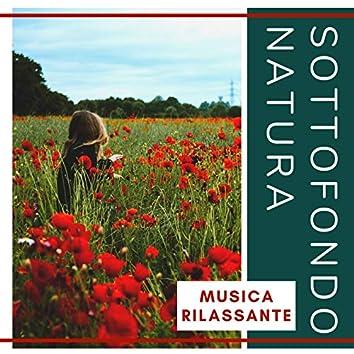 Sottofondo Natura: Musica rilassante per calmare la mente