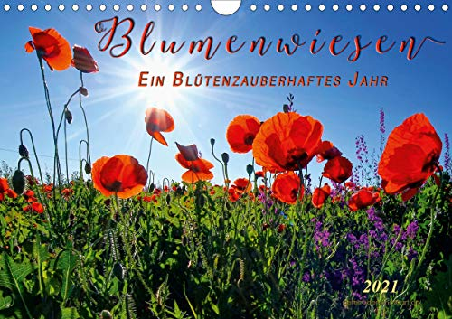 Blumenwiesen – ein blütenzauberhaftes Jahr (Wandkalender 2021 DIN A4 quer)