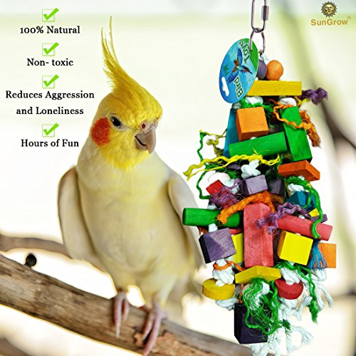 Bird | SunGrow Chewing Toy for Parrots, Cockatiels Macaw, Conure, Nibbling Keeps Beaks Trimmed, Preening Keeps Feathers Clean, Keep Pets Physically & Psychologically Fit, Multicolored Wooden Blocks, Gym exercise ab workouts - shap2.com