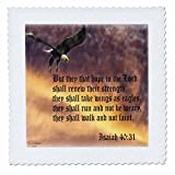 3dRose qs_27419_4 Isaiah 40-31 Bibelvers mit Adler gegen
