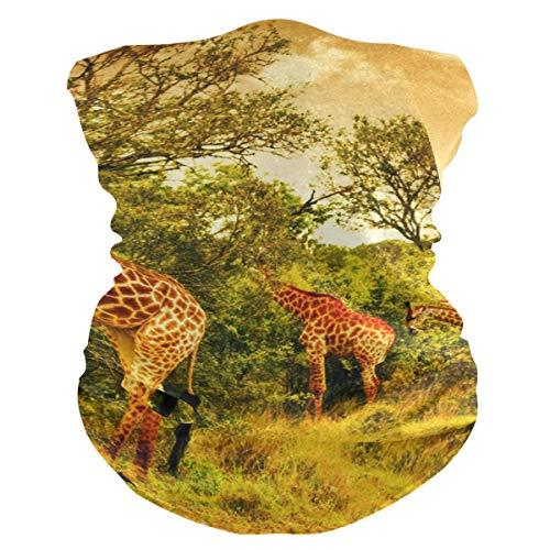 N / A Afrikanische Giraffen,Nahtlose Kopfbedeckung,Männer Frauen Halstücher,Halsmanschette,Sturmhaube,Rundschal,Nahtloses Halstuch,Face Scarf Für Staub