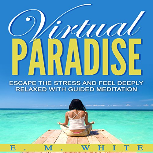 Virtual Paradise audiobook cover art