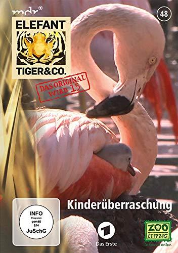 Elefant, Tiger & Co. - Teil 48 - Kinderüberraschung [2 DVDs]