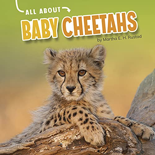 All About Baby Cheetahs (Oh Baby!) (English Edition)