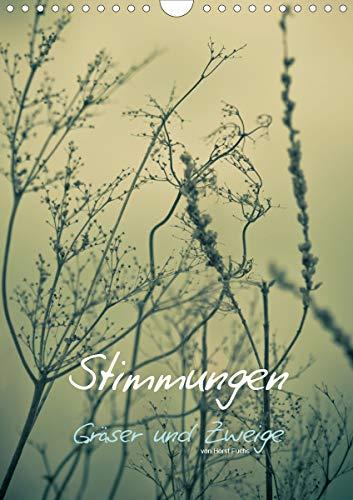 STIMMUNGEN - Gräser und Zweige (Wandkalender 2021 DIN A4 hoch)