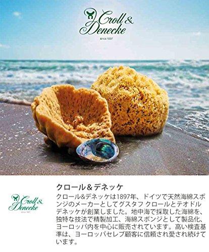 クロール&デネッケ海綿ボディ用M