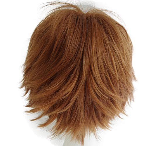 Alacos Unisex Cosplay Short Straight Hair Wig Girl Boy, Brown, Size One Size