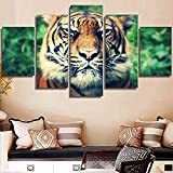 5 Pinturas Lienzo HD Wall Art Canvas Poster Niños Dormitorio Caligrafía 5 Set Animal Tiger Style Moda Decoración del hogar Modular Picture Prints Pintura
