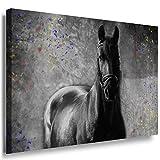 Julia-Art Leinwandbilder - Schwarzes Pferd Bild 1 teilig -